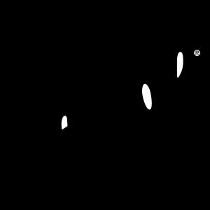 persol-logo-png-transparent